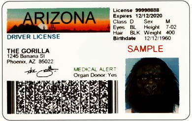 california drivers license barcode format